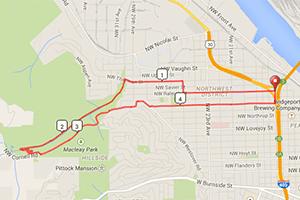 Hyatt Training Macleay Loop run
