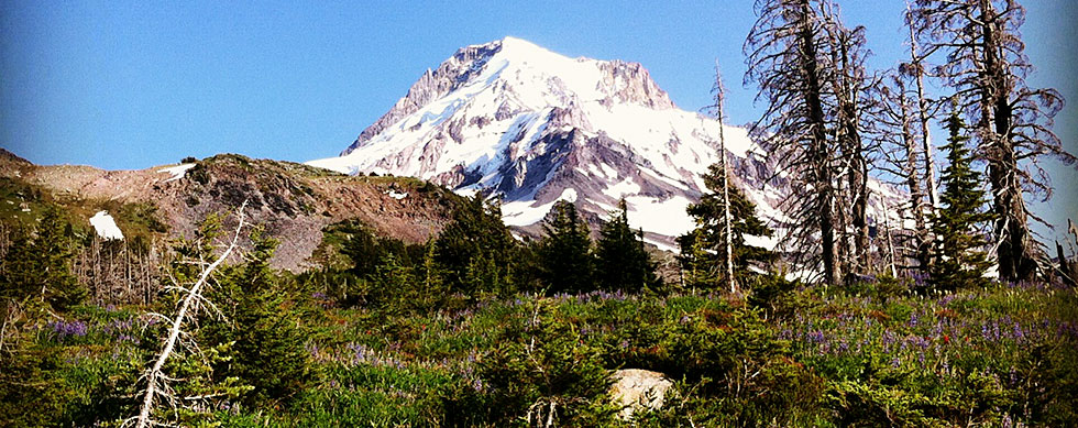 Day hikes at Mount Hood McNeil point