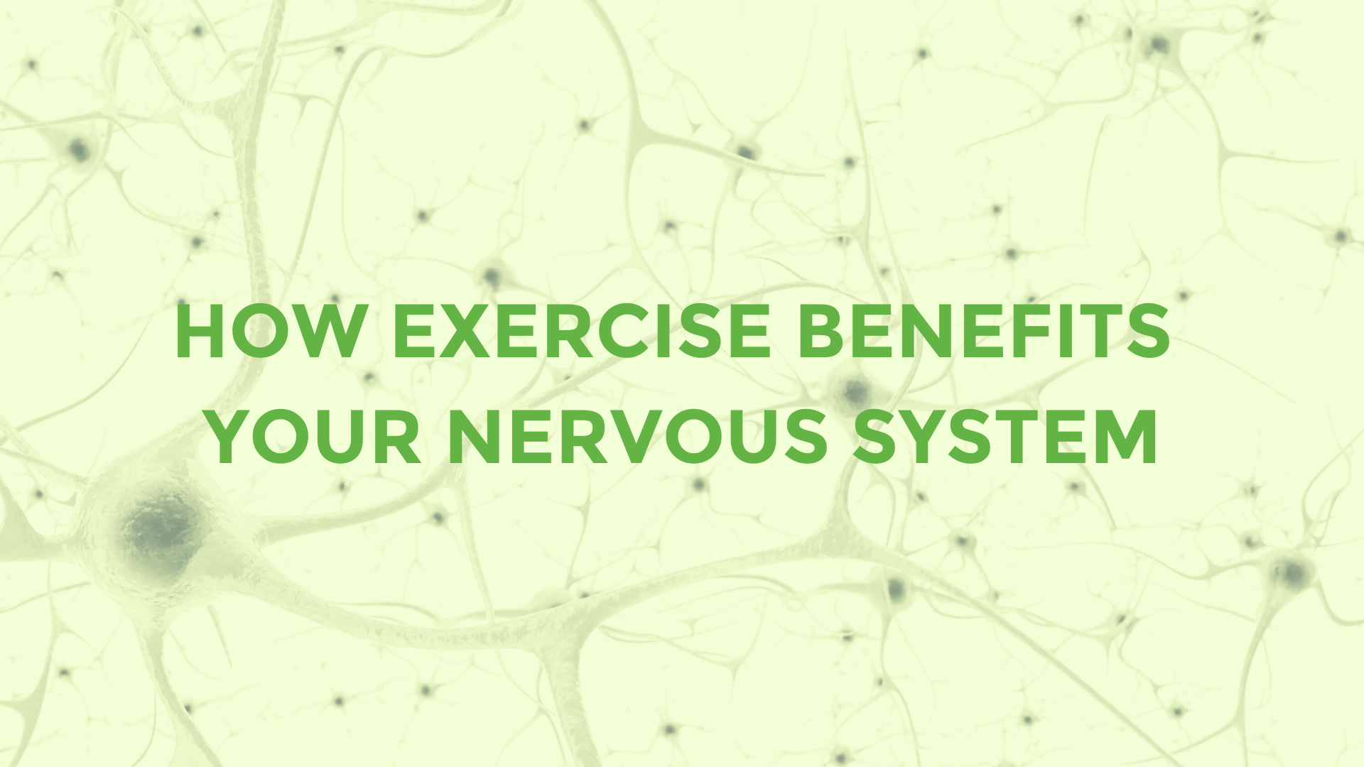 how exercise benefits your nervous system